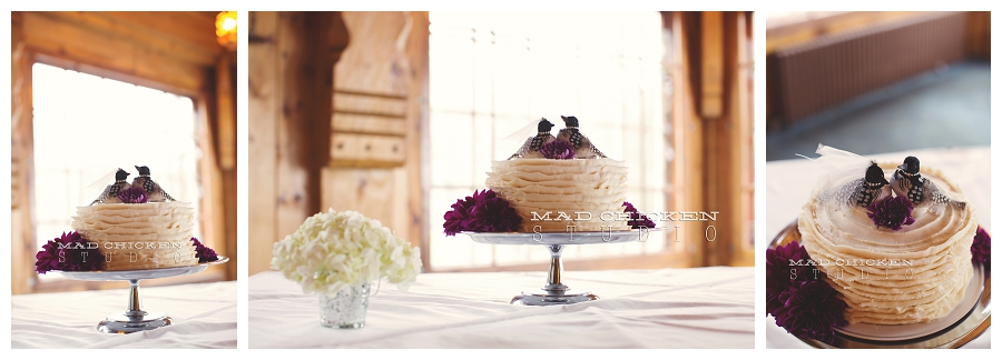 27 wedding cake photographed by duluth wedding photographer mad chicken studio.jpg