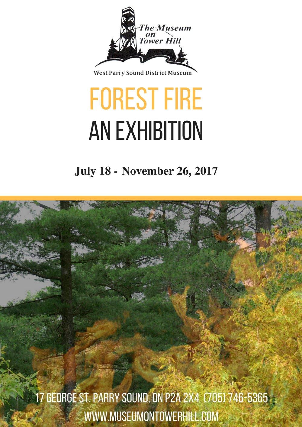 Forest Fire.jpg