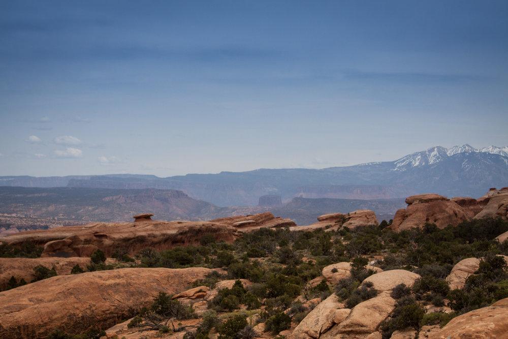 Moab & Rose ROUND 2 212.jpg