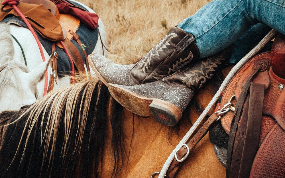cowgirl1 3.jpg