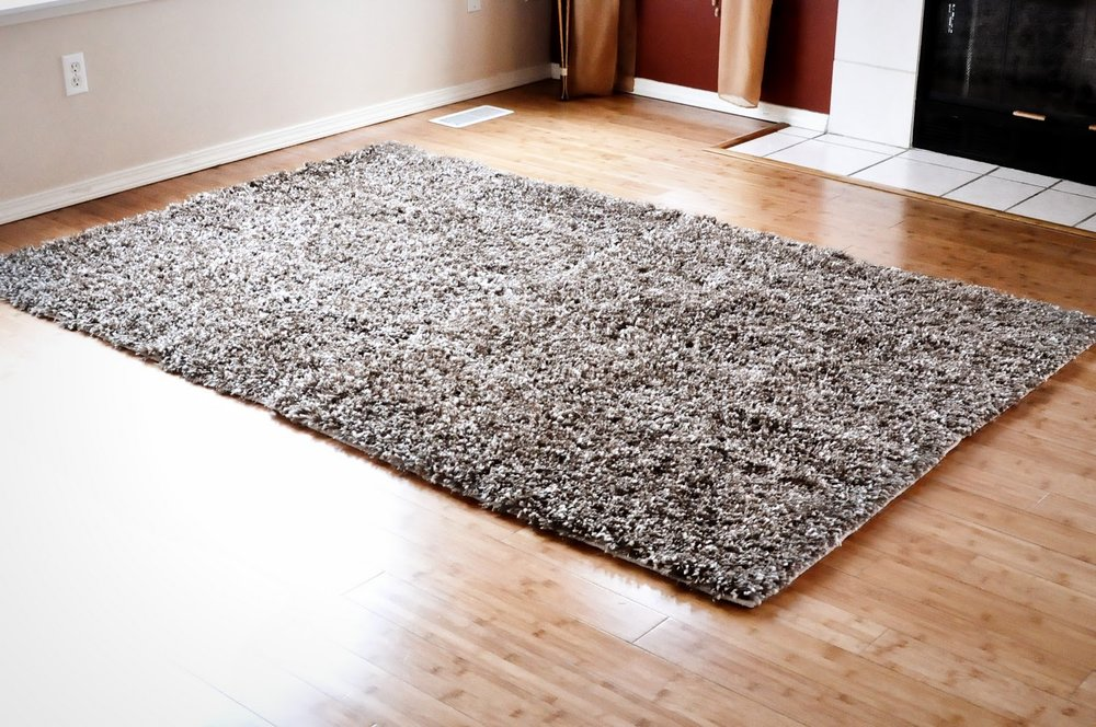 Shag Carpet.jpg
