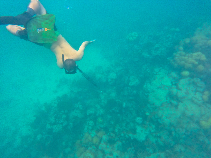 Flipping out that we finally made it out to the reef