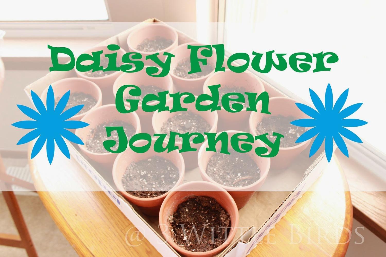 daisy flower garden journey: session 1 - mighty girls rock
