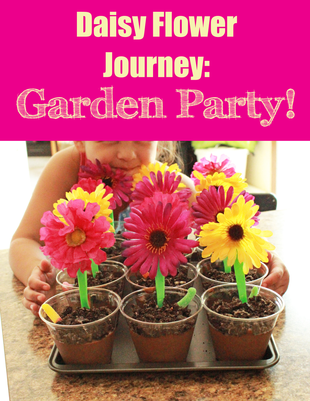 Post mighty girls rock daisy flower garden journey garden party dhlflorist Image collections