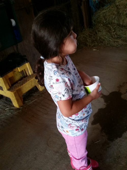 She preferred to eat the snack over feeding the horse.. lol She must have been really hungry!