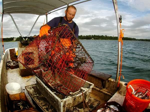 joe crabbing.jpg