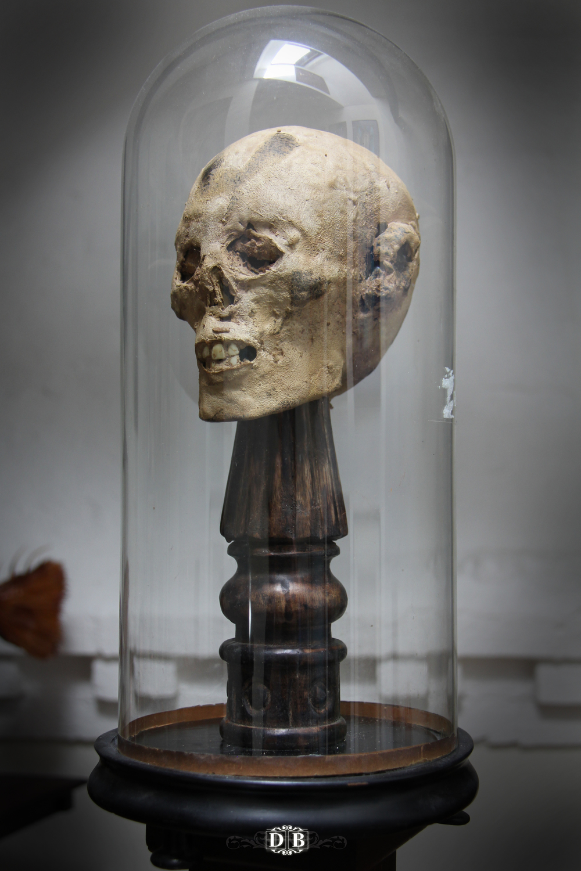 Mummified_Head_1.jpg