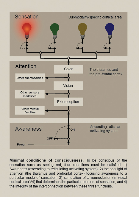 Selective Activation