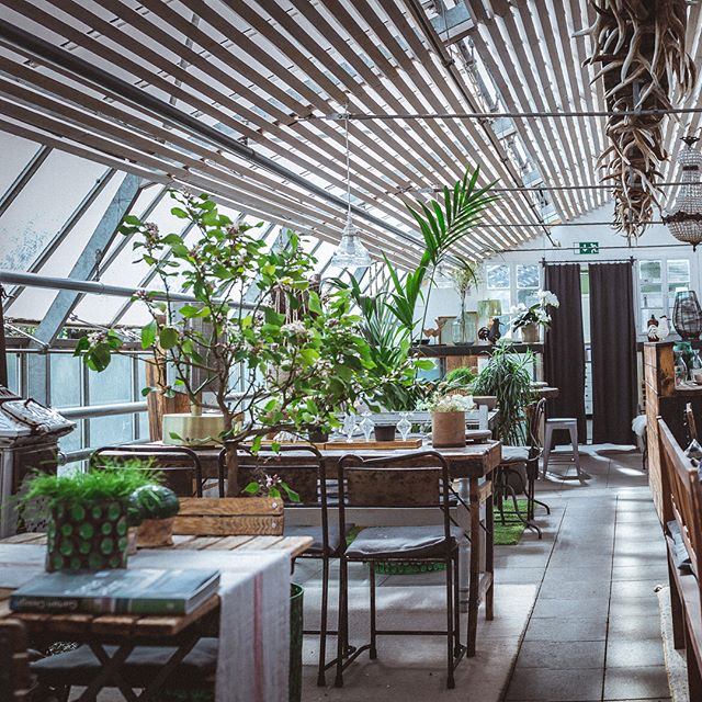 Bei einer guten Tasse Kaffee findet ihr mit Sicherheit den einen oder anderen Schatz in unseren Glashäusern.  #interior #derpranzl #blumen #flowersandmore #fairtrade #minimalistic #ennstal #irdning #jungferimgrünen #nigella