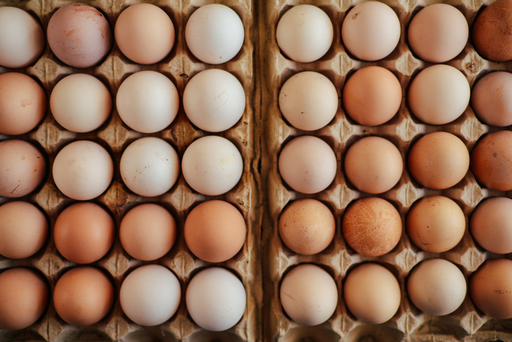 bigstock-Close-Up-Of-Eggs-In-A-Basket--178432576.jpg