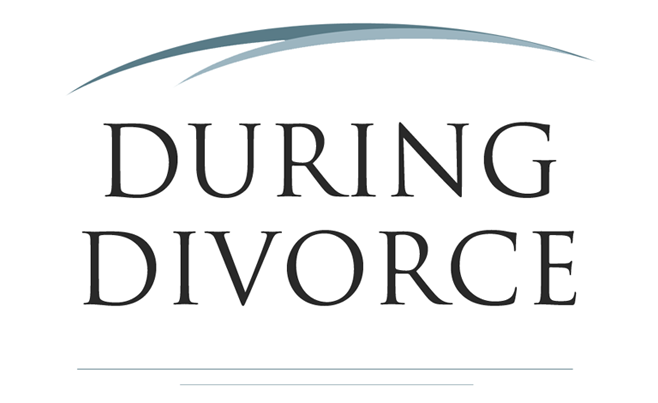 Bridgeworks divorce financial planning we will prepare a comprehensive financial analysis and offer recommendations to help you divorce intelligently and live a financially intelligent life as a solutioingenieria Gallery