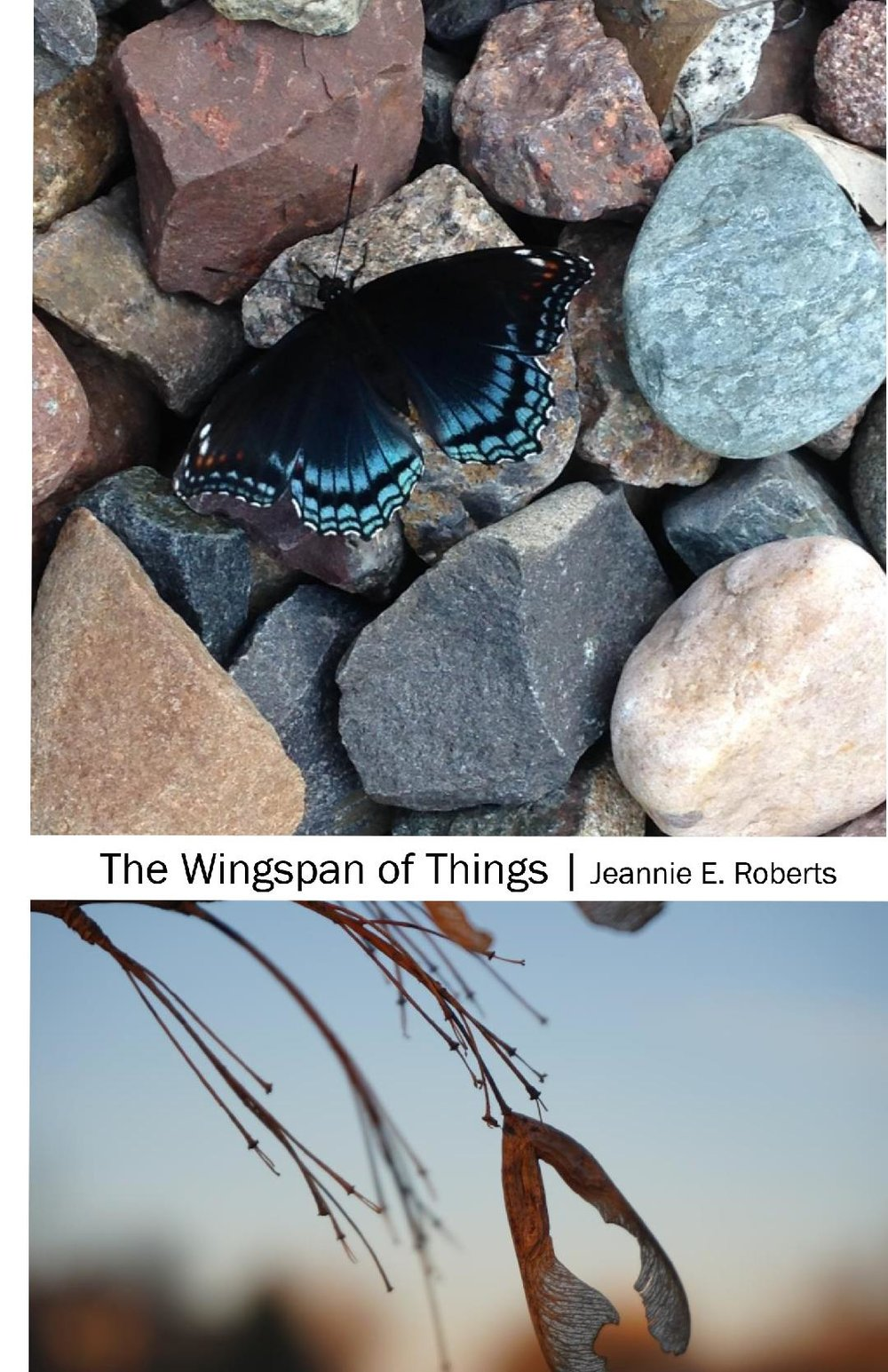 The Wingspan of Things_Cover.jpg