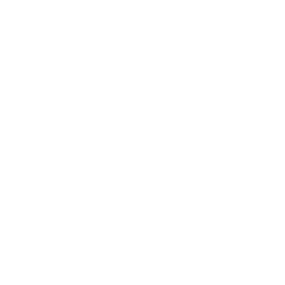 Freezing Light Studios