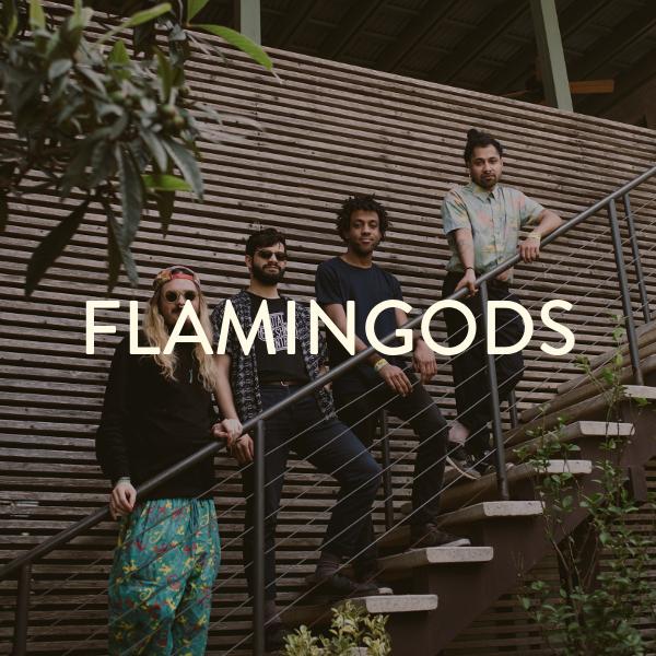 FLAMINGODS.png