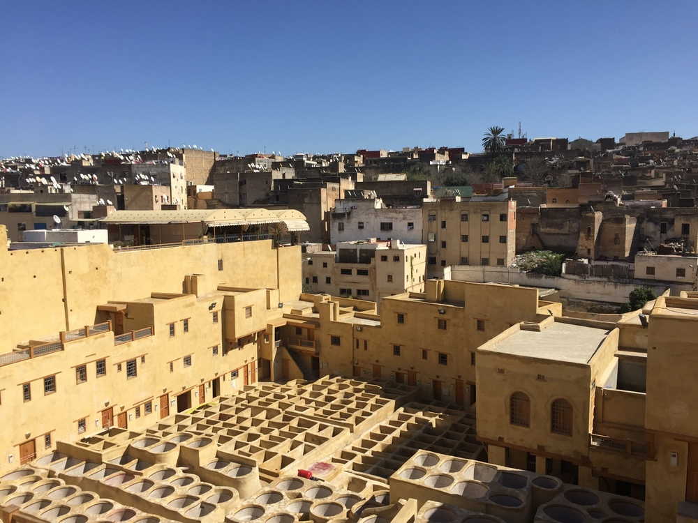 Fez Tanneries, 2016