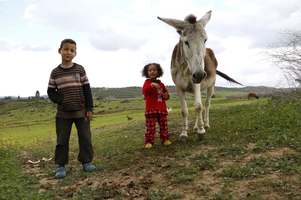 Anas, 7, and Najat, 3, stand with one of the several donkeys that Najat's family owns. Beni Koulla relies on donkeys for transporting crops from one part of the commune to the other.