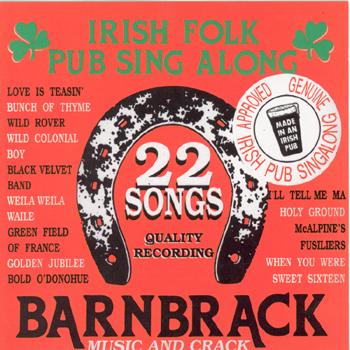 Barnbrack - 22 Irish Folk Pub Songs.jpg