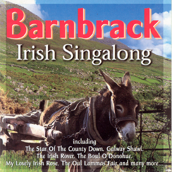 Barnbrack - Irish Singalong.jpg