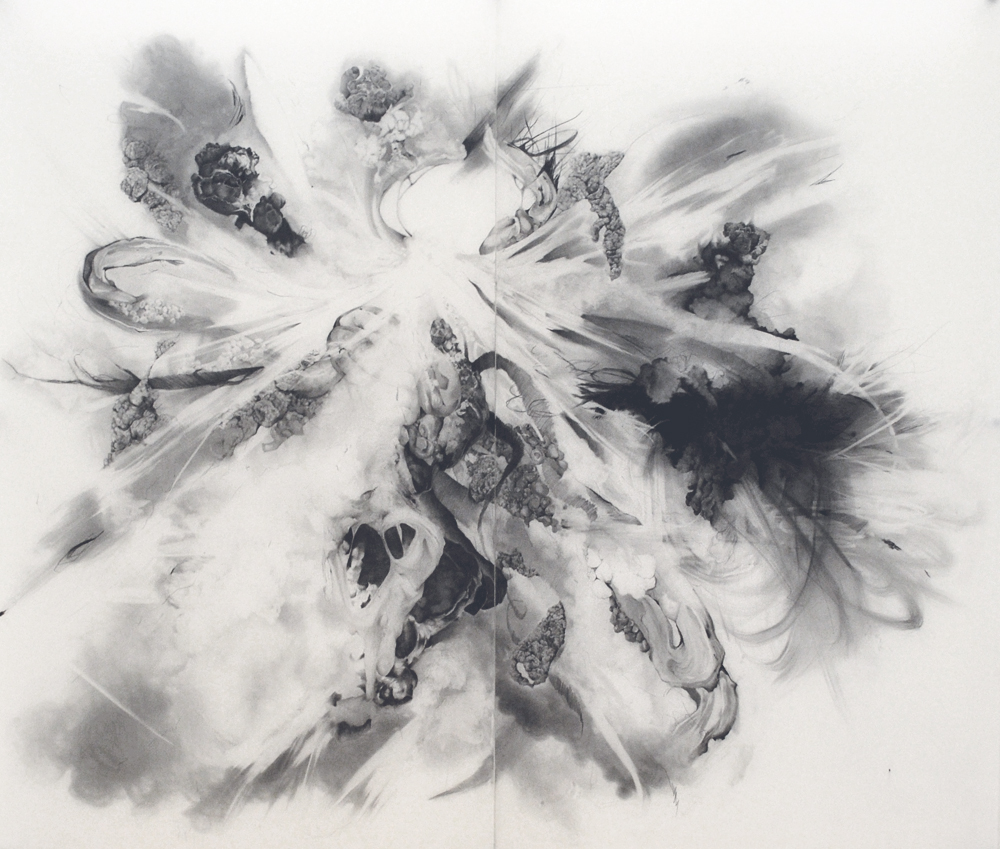 "Transitory States, Graphite on mylar, 72"" x 84"", 2015"