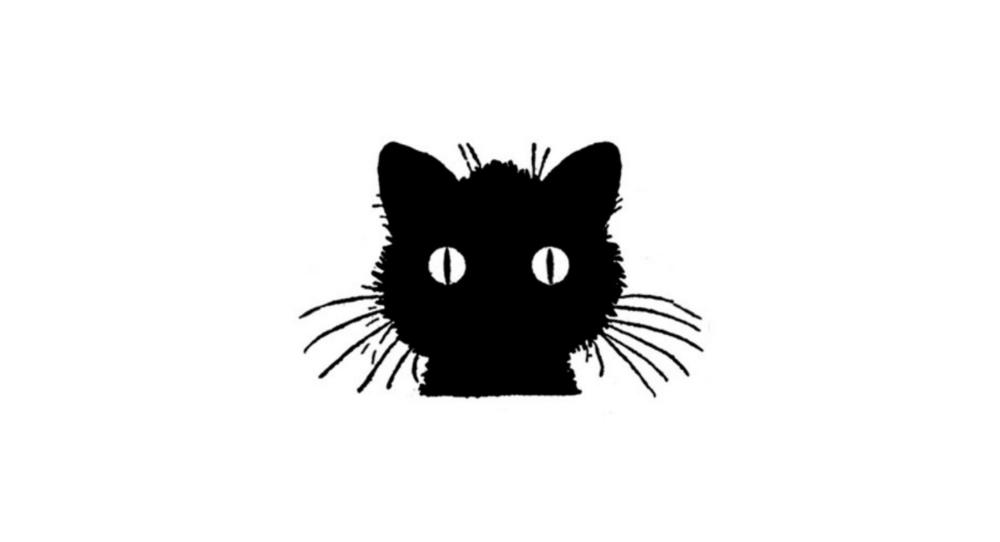 scaredy_cat_1500.jpg