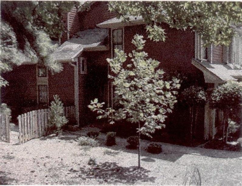 Michael House 2.jpg