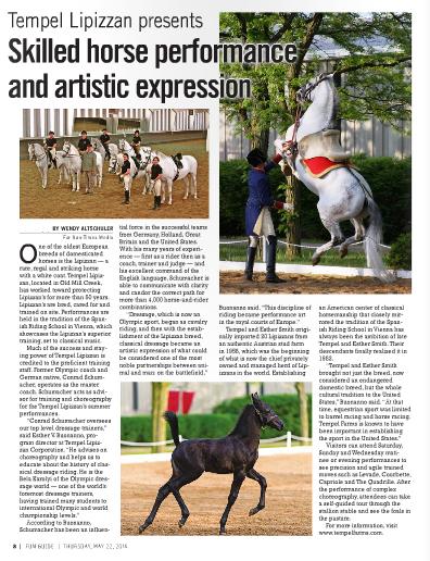 Sun-Times Media Horses.jpg
