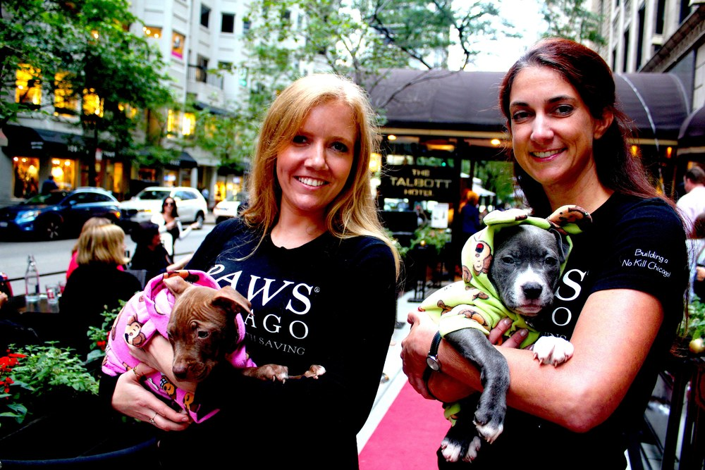 Best part: This event benefited PAWS Chicago