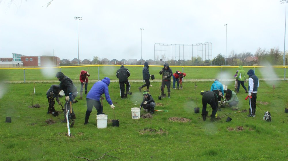 Yes, that's rain, we got a few photos of the volunteers hard at work!