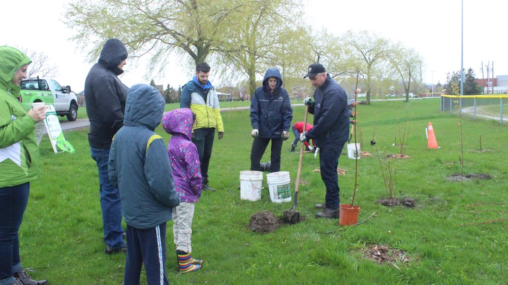 Volunteers getting a quick training on tree planting