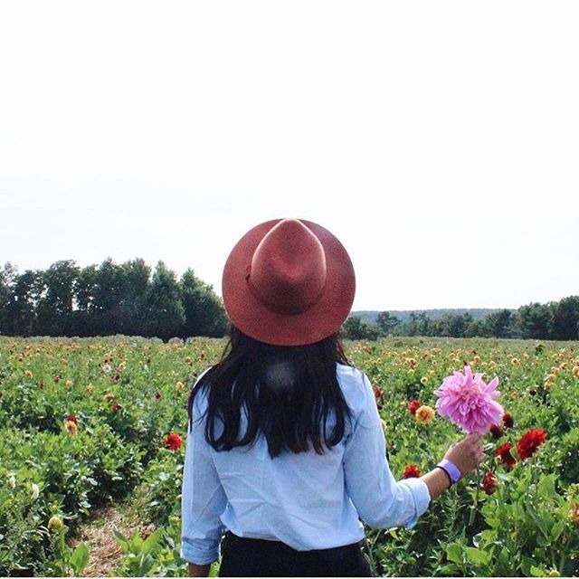Grab your wristbands & map tomorrow and get ready to farm hop! The event runs from 10am-5pm which gives you plenty of time to enjoy the beer, cider, flowers, animals, and beautiful farm goodness that Peel and Caledon have to offer. Tickets and our map are available online & on site so drop by any stop! Be sure to tag #manyfeathersfarmhop and share with us🌻 @ecosourcegreen  @albionhillscommunityfarm  @backyardfarmmarket  @spirittreecider  @goodlot.beer  @davisfeedfarmsupply