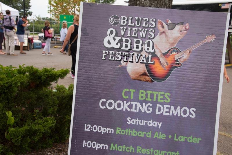 1_blues views bbq festival 2016 (7 of 15).jpg