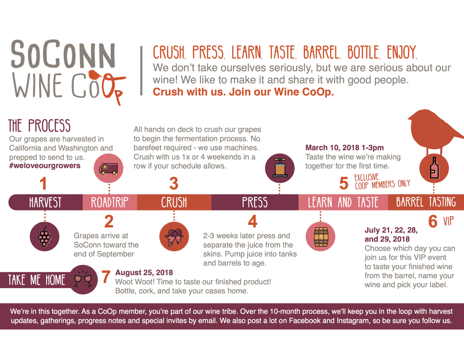 Learn How to Make Your Own Wine w/ Southern Connecticut