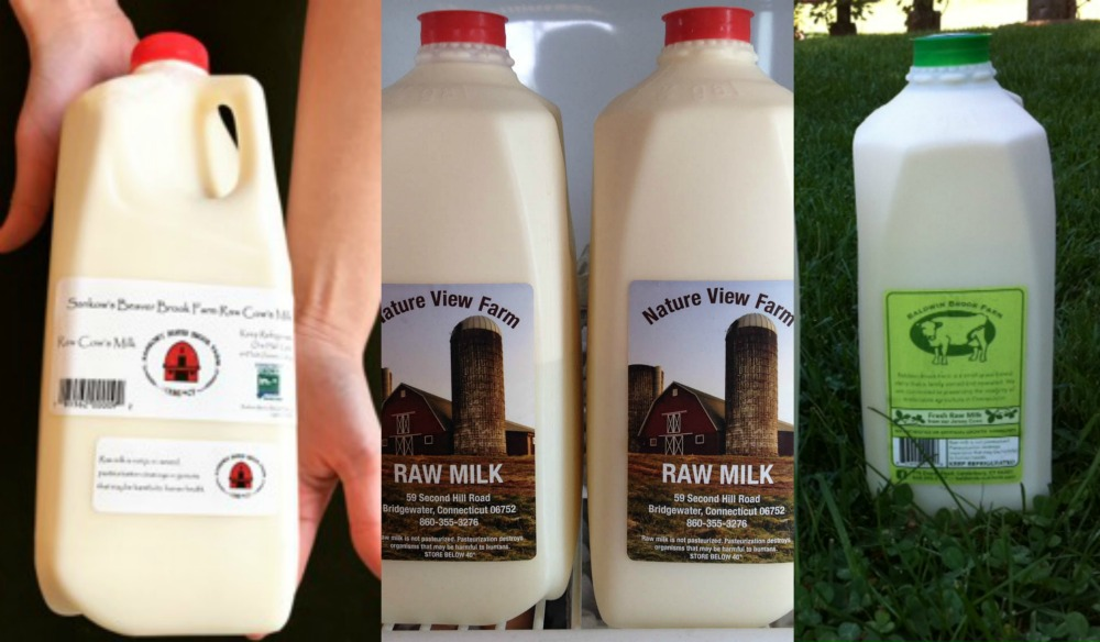 CT Guide To Raw Milk: Why Raw and Where To Buy in CT? — CT Bites