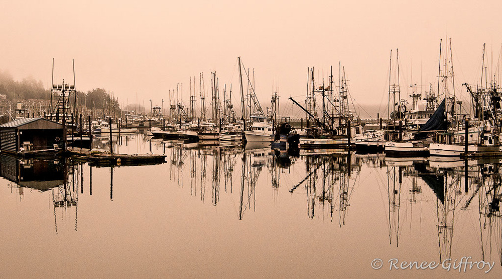 Newport Harbor, OR
