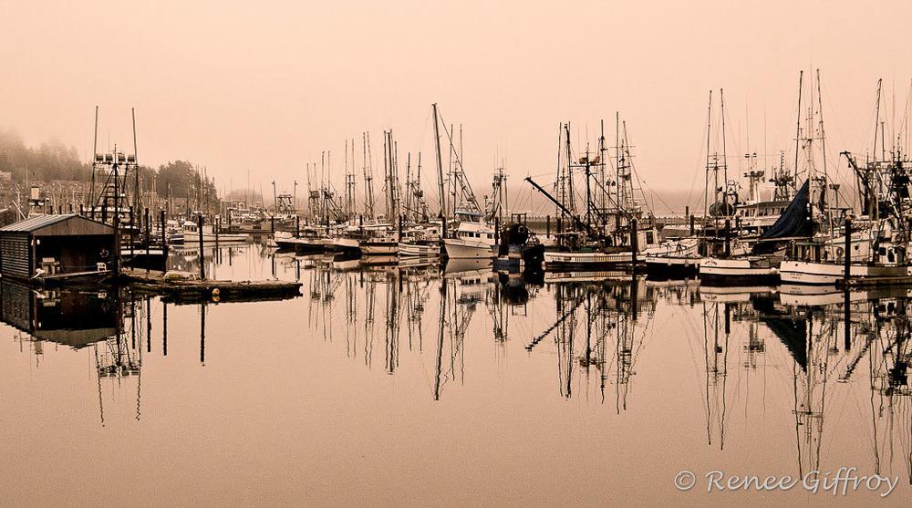 Newport Harbor, OR