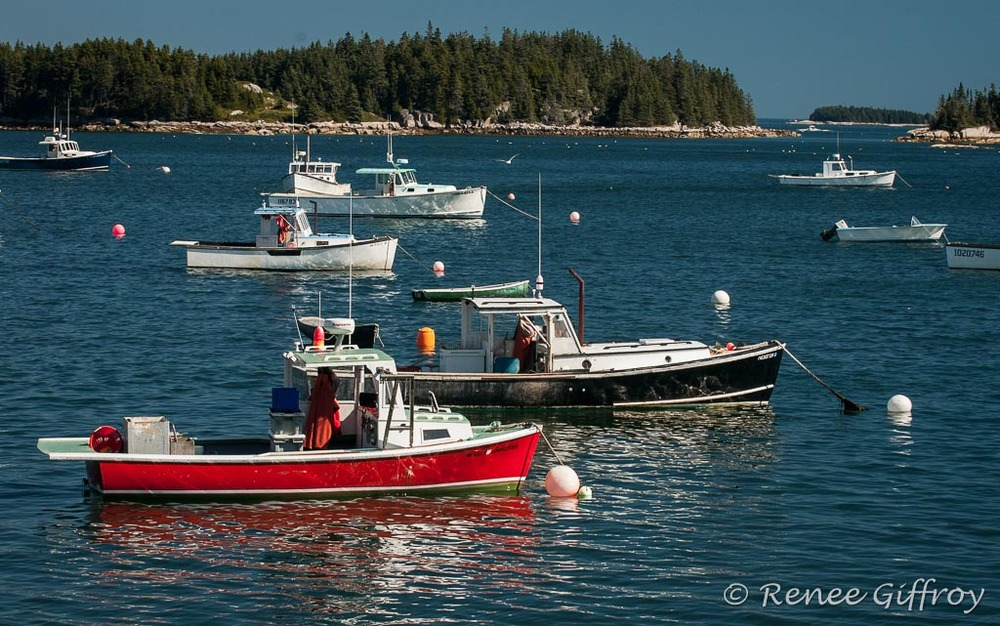 Lobster boats red and blue with watermark-1.jpg