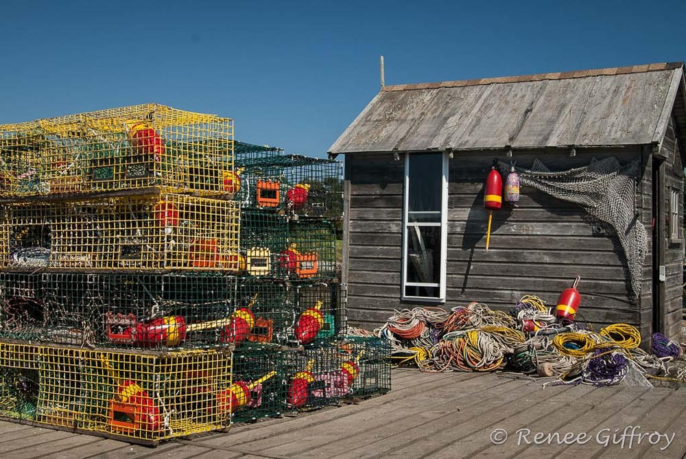 Lobster shack with colorful pots with watermark-1.jpg