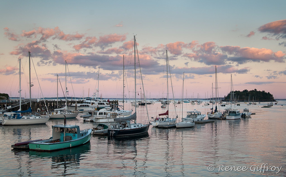 Camden Harbor with watermark-1.jpg