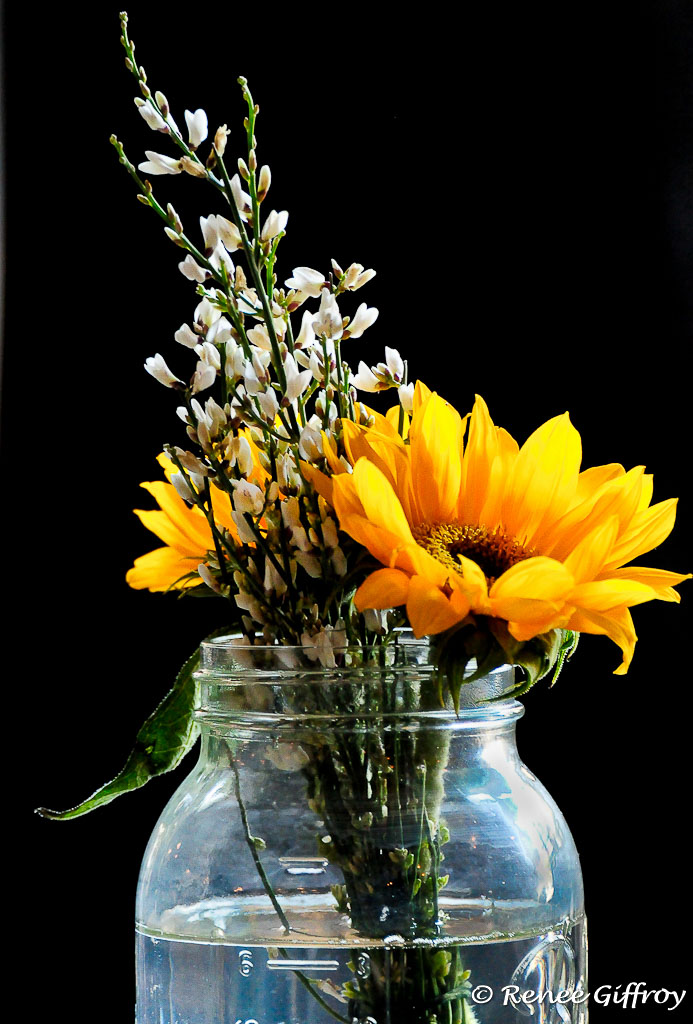 Flowers in jar with watermark-1.jpg