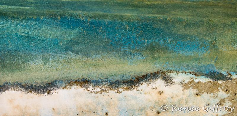 Sunny Day Dunes for web-1.jpg