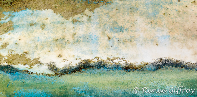'Sea Foam'  (companion to Sunny Day Dunes)