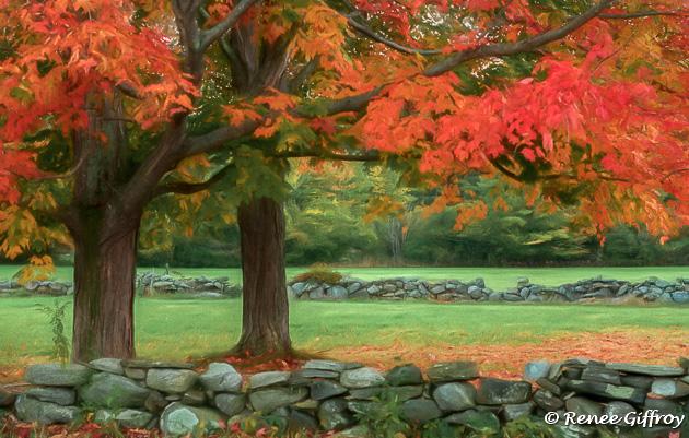 Autumn morning on Washington Road for web-1.jpg