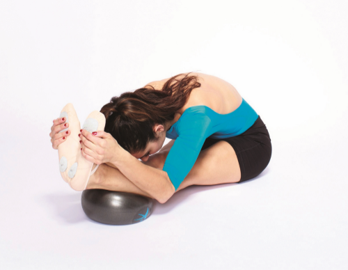 FLX Ball Hamstring Stretch