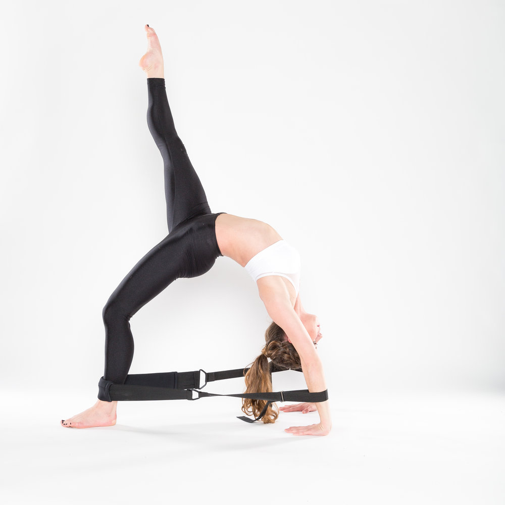 flexistretcher single legged wheel