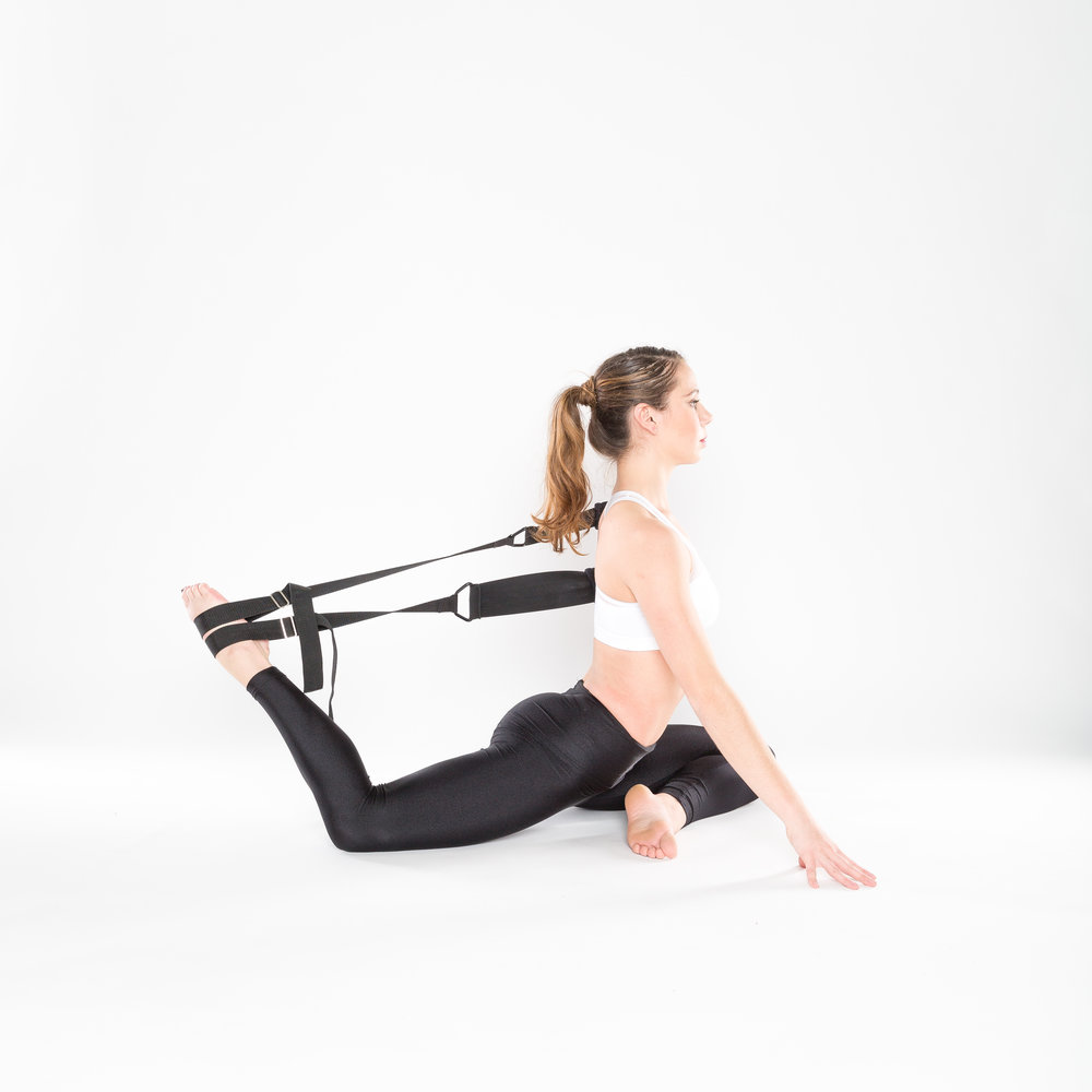 FLEXISTRETCHER PIGEON REIN SHORT