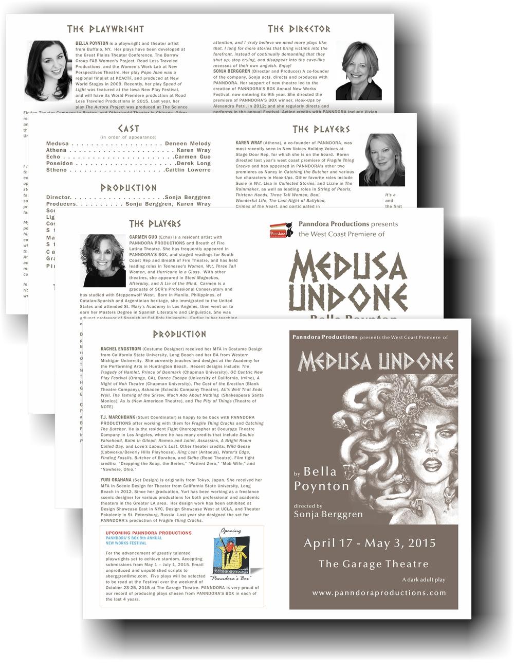 Medusa Program.jpg