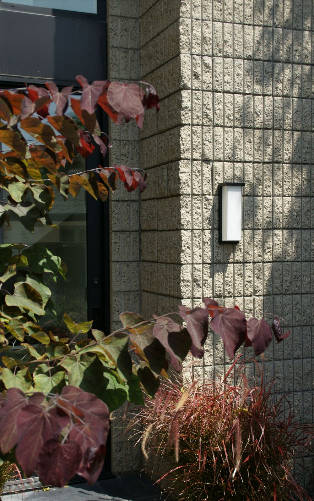 Corinthian Courtyard s3.jpg