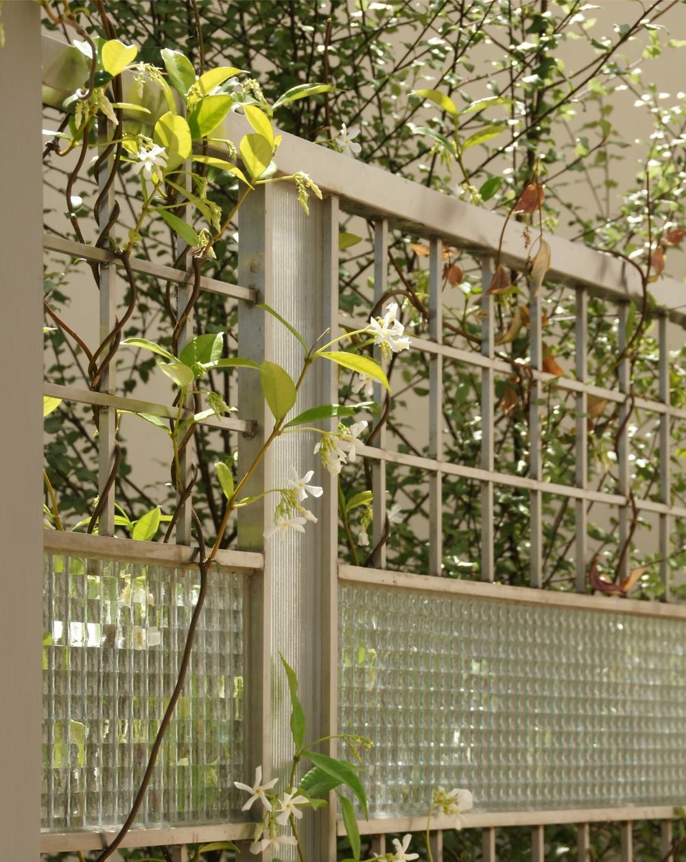 Sideyard Fence - 1.jpg