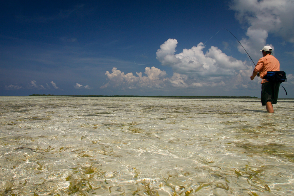 Fly Fishing for Bonefish, Isla de la Juventud, Cuba