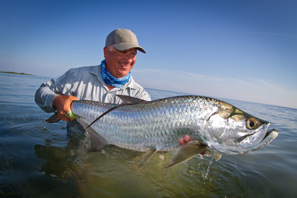 I thought the Tarpon fishing was excellent. My expectations were much lower given the time of year, but I caught Tarpon every day